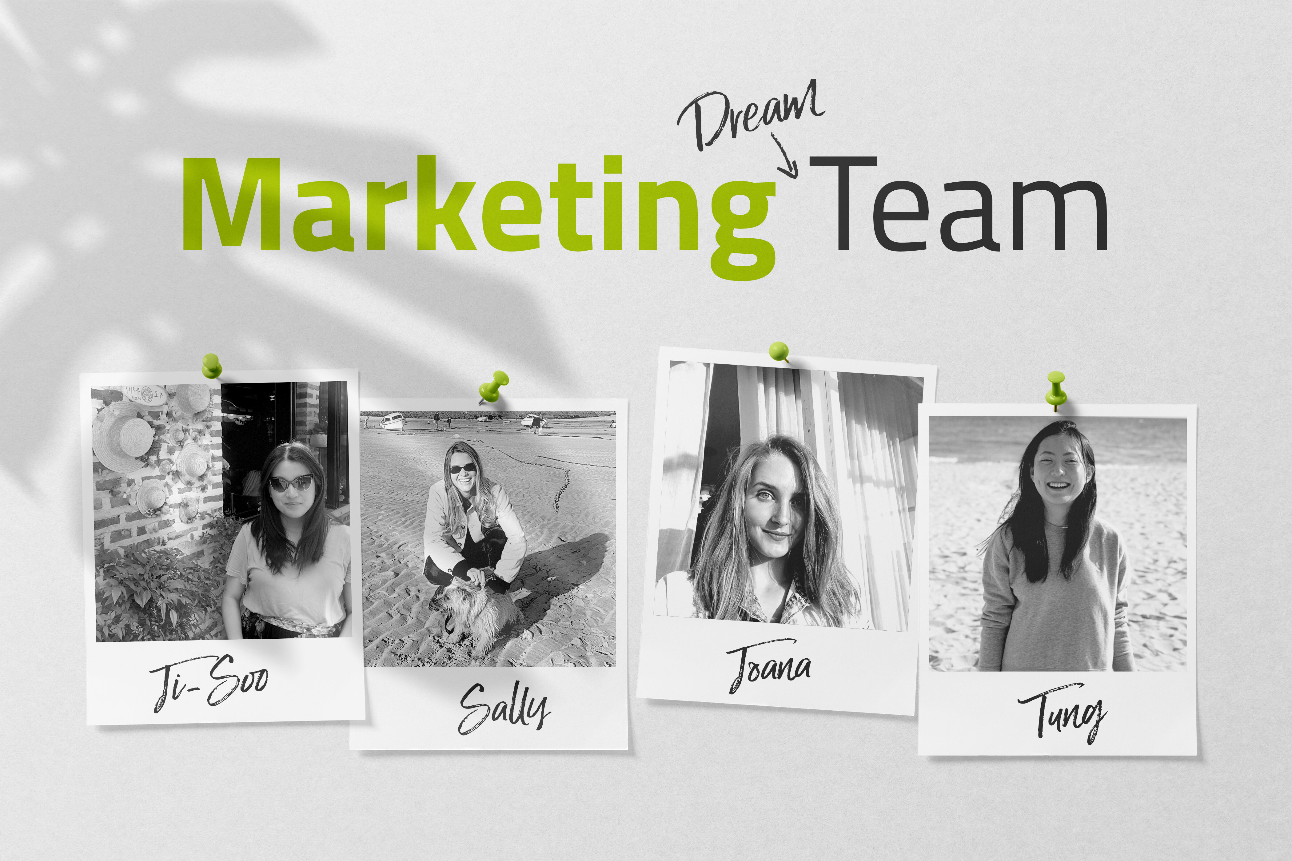 The keylight Marketing (dream) Team members depicted on a board of black and white polaroid pictures.